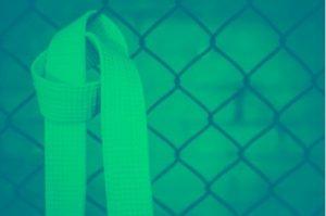 Certification green belt ergo santé