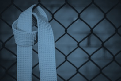 Blue belt lean management