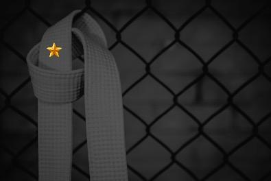 Master black belt lean management
