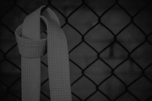 Certification black belt ergo santé